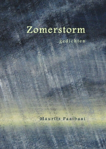 Cover Zomerstorm